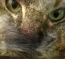 Textured Cat by Olga