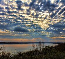 Another Cloudscape by Carolyn  Fletcher
