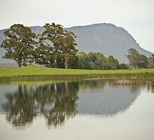 Mt Roland Reflection by Tania Russell
