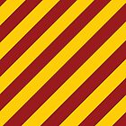 USC stripes by Nikola Kantar