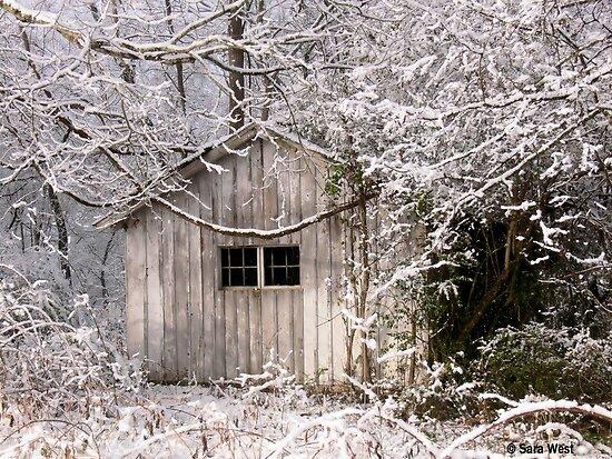 Snowy Scene by BarbWireNRoses