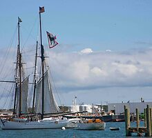 Black Dog Tall Ship by phil decocco