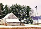 A Snowy Country Day by Grinch/R. Pross