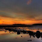 Strangford Lough by Alan McMorris
