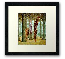 Giraffe In Forest Framed Print