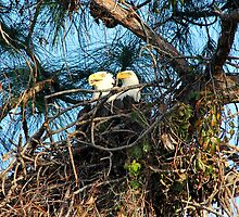 Loving couple by Larry Baker