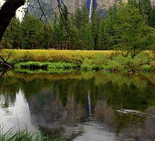 """""""Fall Reflection"""" by Lynn Bawden"""