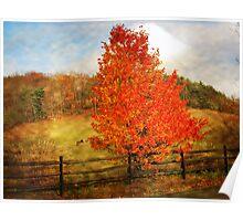 Glorious Fall In Pennsylvania Poster