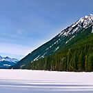 Duffey Lake by David Geoffrey Gosling (Dave Gosling)