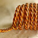copper twist by lensbaby