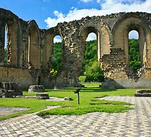 Byland Abbey by Anne Hargreaves
