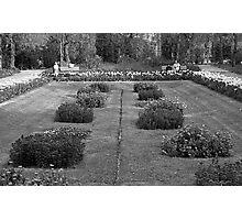 Turo Park Photographic Print
