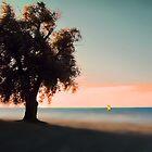 Port Dalhousie by Ticker