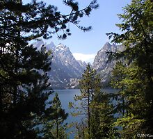 Jenny Lake by Rick Thiemke