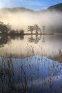 Chon Mist by Karl Williams