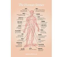 The Human Senses Photographic Print