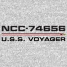 ST Registry Series - Voyager Logo by Christopher Bunye