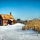 Country Kitchen by trussphoto