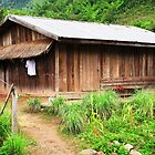 Traditional Windowless Hmong House © by Ethna Gillespie