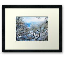 Frozen Trees 2 Framed Print