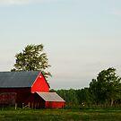 Red Barn, Morning Light, South Dundas County by Skye Hohmann
