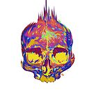 Rainbow Skull by James Fosdike