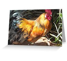 Farm talk - Artemis in glorious colour Greeting Card