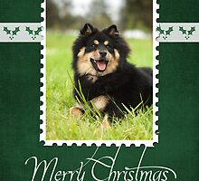 Christmas Card No 16 by FLCV