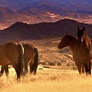 Tribal Lands and Wild Horses  by Jeanne  Nations