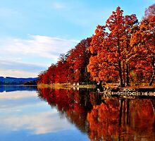 Lake at Fall by Daidalos