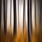 Forest Essence - Autumn Landscape Vertical Panning by Dave Allen