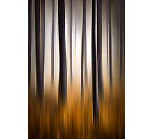 Forest Essence - Autumn Landscape Vertical Panning Photographic Print