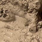 Boiling Mud by wanderingtrucki