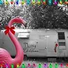 Holiday Pink Flamingo by Hilary Walker