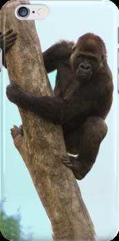 Gorilla iPhone case by Brad Francis