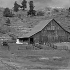 Rustic Farming by Nate Welk