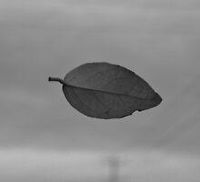 Leave It Be by Aaron  Paul