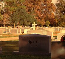 Beaver Hill Cemetery by WeeZie