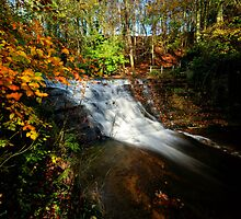 Bersham Falls - River Clywedog by Simon Pattinson