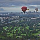 Melbourne Morning Balloon Flight by JenniferW