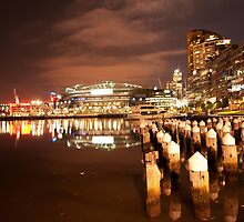 Melbourne Docklands by Danielle  Miner