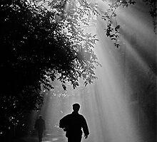 Sun's Revelation - original - black & white by Boris B. Voglar photography