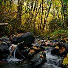 Jusr Let Me Go by Charles & Patricia   Harkins ~ Picture Oregon