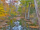 Deep Creek in Autumn - Green Lane PA by MotherNature