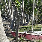 Bingil Bay boat and trees by STHogan