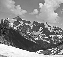 b&w mt shuksan, washington, usa by dedmanshootn