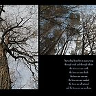 Branches by DreamCatcher/ Kyrah Barbette L Hale