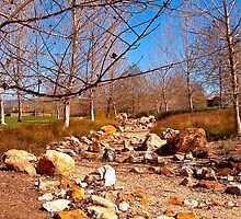 Dry Creek in Winter by Christine Chase Cooper