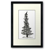 evergreen (haiga X) Framed Print