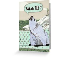 What's Up Bear Greeting Card